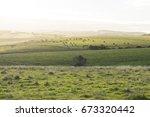 random coastal farming land in... | Shutterstock . vector #673320442