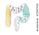 large intestine in zentangle | Shutterstock .eps vector #673337425