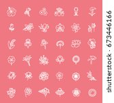 set of floral icon in flat... | Shutterstock .eps vector #673446166