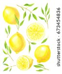lemons  lemon slices and leaves ... | Shutterstock . vector #673454836