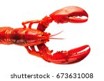 boiled red lobster isolated on... | Shutterstock . vector #673631008