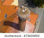 aerial view of white storks... | Shutterstock . vector #673634002