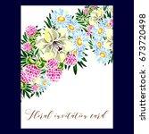 vintage delicate invitation... | Shutterstock .eps vector #673720498