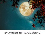 beautiful autumn fantasy  ... | Shutterstock . vector #673730542