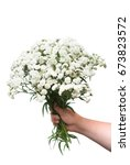 Small photo of A bouquet of curative flowers yarrow keeps in the hand a girl is isolated on a white background. Achillea millefolium