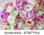 beautiful flowers. a flower... | Shutterstock . vector #673877416