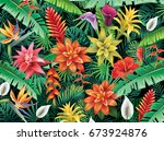 background from tropical... | Shutterstock .eps vector #673924876