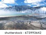 usa  wyoming  yellowstone... | Shutterstock . vector #673993642