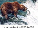 usa  alaska  katmai national... | Shutterstock . vector #673996852