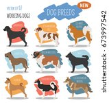 working  watching dog breeds  ... | Shutterstock .eps vector #673997542