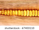 close up of the corn - stock photo