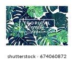 summer vector tropical postcard ... | Shutterstock .eps vector #674060872