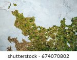 Green Moss On Old Wall  Moss O...