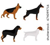 Set Of Dogs Breeds Color Flat...