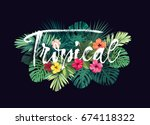 summer hawaiian design for card ... | Shutterstock . vector #674118322