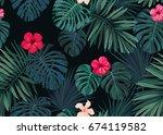 seamless hand drawn botanical... | Shutterstock . vector #674119582