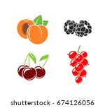 berries and fruit on white... | Shutterstock .eps vector #674126056