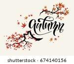 red asian autumn maple branch... | Shutterstock .eps vector #674140156