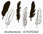 feathers of birds. set of... | Shutterstock .eps vector #674192362