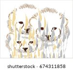 cheetah cubs in the bush | Shutterstock .eps vector #674311858