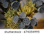 Blurred Dry Lotus Seed Pot ...