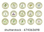 set of essential oil labels.... | Shutterstock .eps vector #674363698