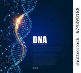 human dna molecule background.... | Shutterstock .eps vector #674390188