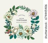 vintage color botanical... | Shutterstock .eps vector #674445406
