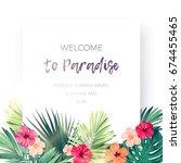 green summer tropical... | Shutterstock .eps vector #674455465