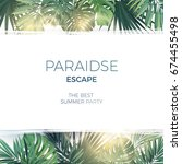 green summer tropical... | Shutterstock .eps vector #674455498