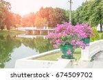 garden and light flare | Shutterstock . vector #674509702