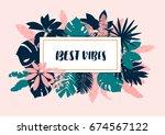 hand drawn illustration. summer ... | Shutterstock .eps vector #674567122