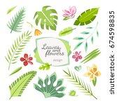 tropical leaves flowers... | Shutterstock .eps vector #674598835