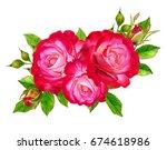 flower composition. a bouquet... | Shutterstock . vector #674618986