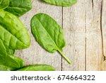 the leaves of greens  sorrel... | Shutterstock . vector #674664322
