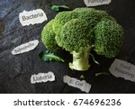 broccoli with various food... | Shutterstock . vector #674696236