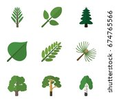 flat icon nature set of timber  ... | Shutterstock .eps vector #674765566