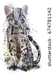 Ocelot Watercolor Painting