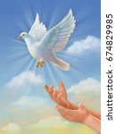 White Dove  Symbol Of Peace ...