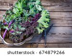 Red Kale Leaves Or Russian Kal...