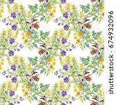 bright field beautiful floral... | Shutterstock . vector #674932096