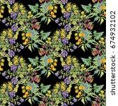 bright field beautiful floral... | Shutterstock . vector #674932102