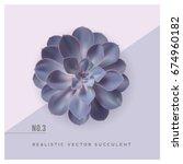 Realistic Vector Illustration...
