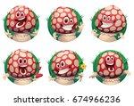vector set of round green... | Shutterstock .eps vector #674966236