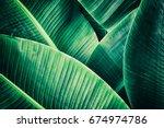 Tropical Leaf  Large Palm...