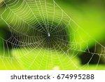 Cobweb Spider Web. Spider On...
