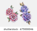 sketch of a beautiful branch of ... | Shutterstock . vector #675000046