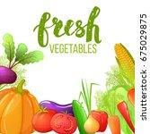colorful cartoon set of... | Shutterstock . vector #675029875