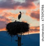 Small photo of Stork stands guarding the nestlings in his nest. Beautiful sunset clouds in the background - Banya, Bulgaria