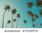 palm trees vintage filter toned | Shutterstock . vector #675105976